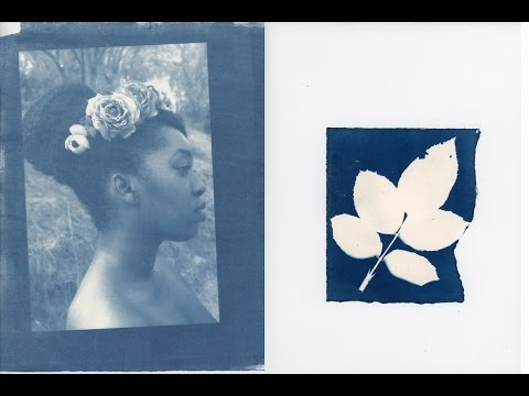 Making Cyanotypes at Home