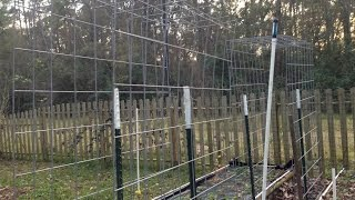 Build A Cattle Panel Garden Trellis