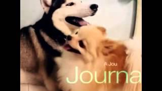❤siberianhusky Husky Pomeranian Pom Dog