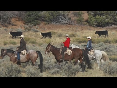 Riding With The Heaton Ranch