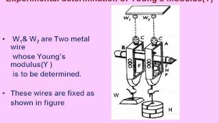 Physics Strain Energy and Experimental Determination of Y