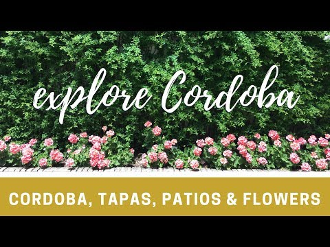 24 Hours in Cordoba - Exploring Andalusia | Lady Sneakers