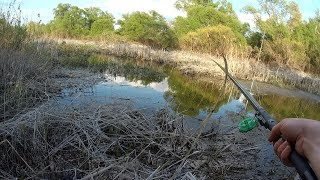 Рыбалка в ручье и небольшом озере на спиннинг и поплавочную удочку.