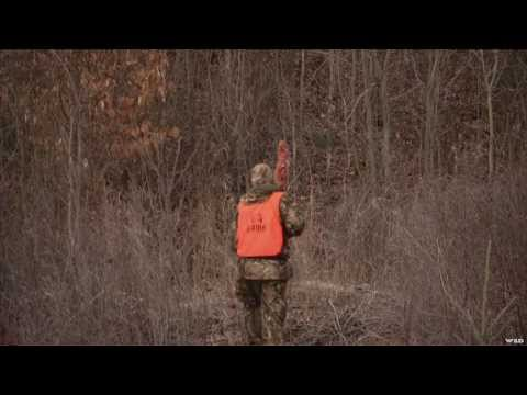 Hunting Whitetail Deer in Quebec