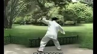 Sun Xu 孙绪 - Xingyiquan Tao Lu: Shi Er Xing, Ba Shi Quan, Za Shi Chui, An Shen Pao