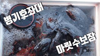 서해안병기호좌대3탄 대박조황