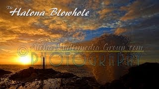 Halona Blowhole Up Close Low Angle Clip 4