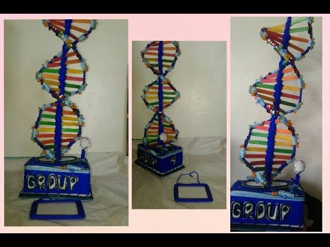 Tips and Tricks(DNA project model)HOW TO MAKE DNA STRUCTURE MODEL..STEP BY STEP😇😆👌science