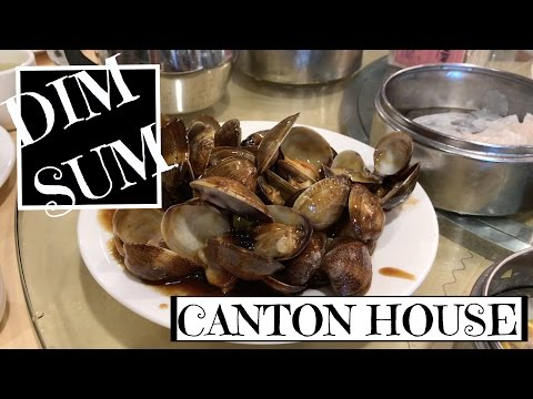 DIM SUM (YUM CHA) at CANTON HOUSE | Atlanta Food Diary