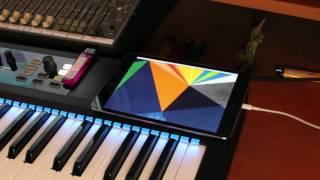 iPad as third display for UA Apollo Console control!