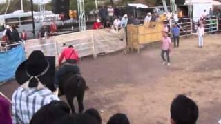 2010 Toros Santa Maria de la Huerta Ameca Jalisco