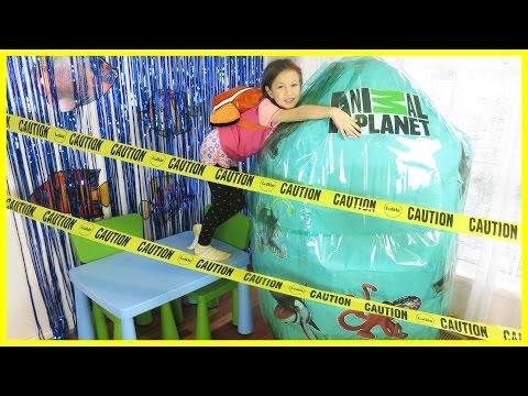 ANIMAL PLANET GIANT SURPRISE EGG Animal Planet Egg Surprise Toys for Kids MEGA SHARK ORCA ENCOUNTER