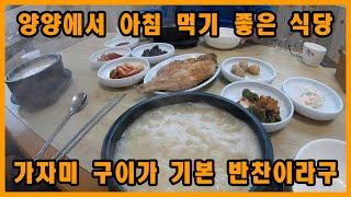 강원도 양양에서 아침식사하기 좋은 식당 감나무 식당 황…