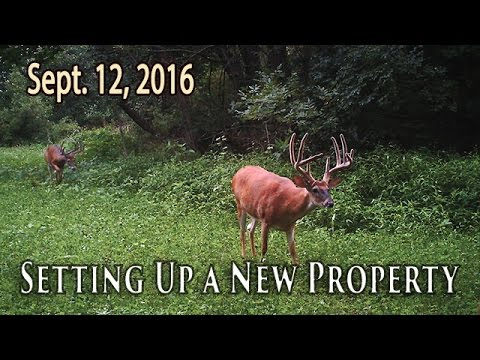 Setting Up A New Property | Midwest Whitetail