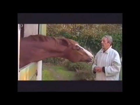 Jean Rochefort même son cheval a de l'humour