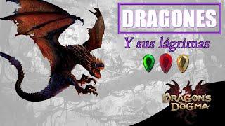 DRAGONS DOGMA DARK ARISEN | UBICACIÓN DRAGONES Y LÁGRIMAS