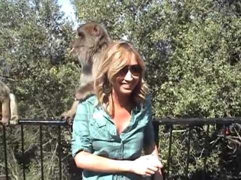 ลิงจับนมสาว