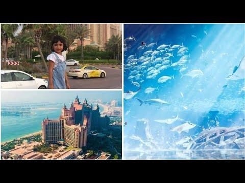Nunu @ Atlantis The Palm The lost chambers aquarium, Dubai. Nunoos World – Test video Upload 4