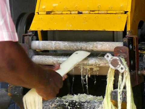 how to make paper from banana fiber