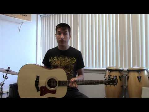 Taylor 110e and 210 Guitar Review