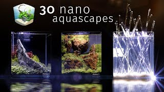 Thirty Of the Best Nano Aquascapes In America - Aquatic Experience 2017