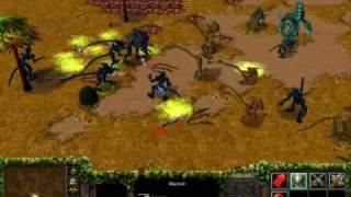AVP - extinction 2 (wc3)