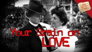 Your Brain on Love | Digging Deeper