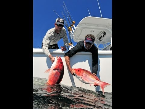 Into the blue 39 dream fishing trip 39 2013 season 5 epi for Into the blue fishing