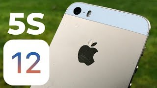 iPhone 5S will get iOS 12! Probably.