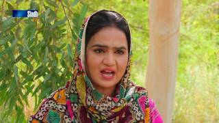 Sindh TV Soap Serial Mitti ja Manho Ep43 Part 2 - 22-9-2016 - HD1080p - SindhTVHD