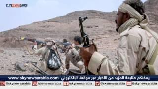 اليمن في مواجهة ثنائية التمرد والإرهاب