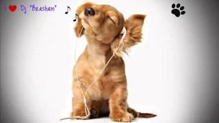 Chino y Nacho - El Poeta Mix ( by Dj Brasham)