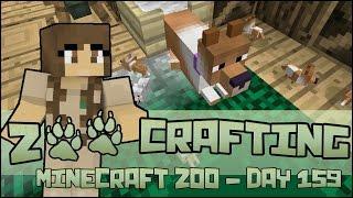 Zoo Crafting! So Many Newborn Puppies!! - Episode #159   Season 2