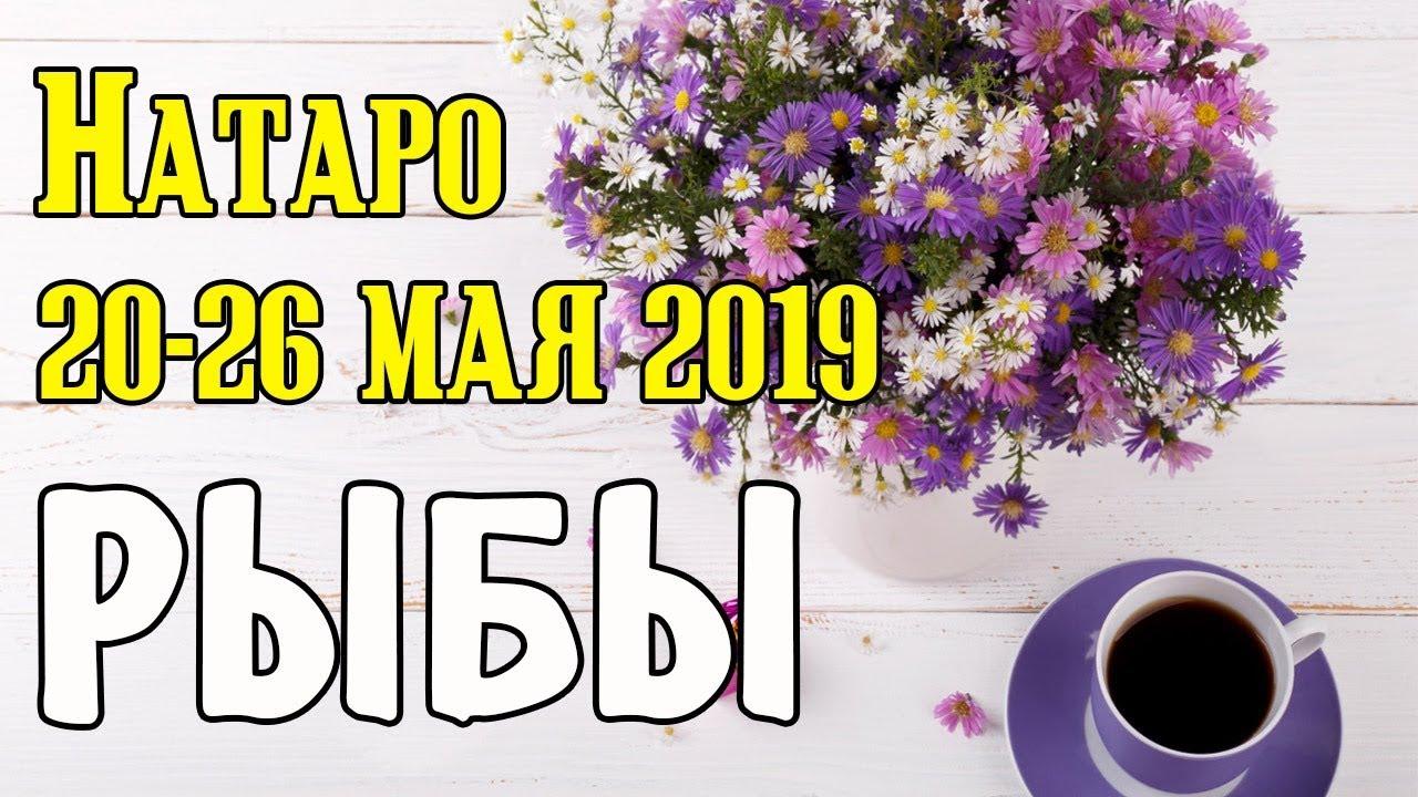РЫБЫ — таро прогноз 20-26 мая 2019 года НАТАРО.