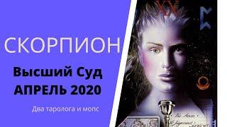 Высший суд. Апрель 2020. СКОРПИОН