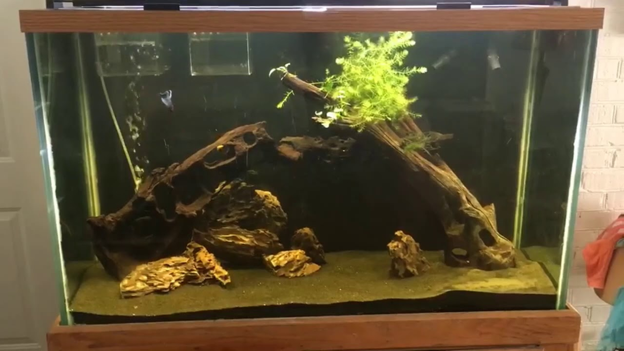 fluval 3 0 plant light review on deep tank youtube