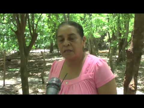 Trabajan por la preservación de la Cuenca del Río Tecomapa en Somotillo