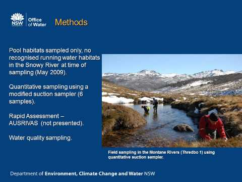 The impacts of the Snowy Mountains Scheme on the invertebrate assemblages