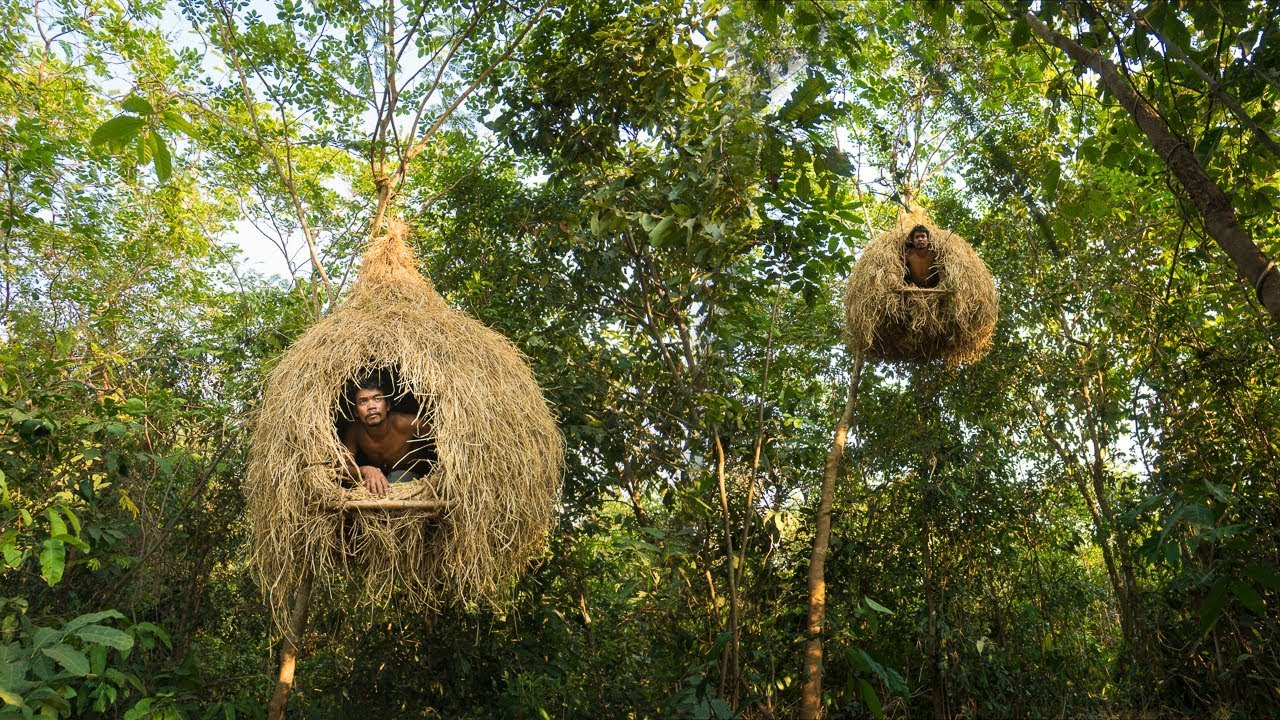 Building Bird Nest Tree House