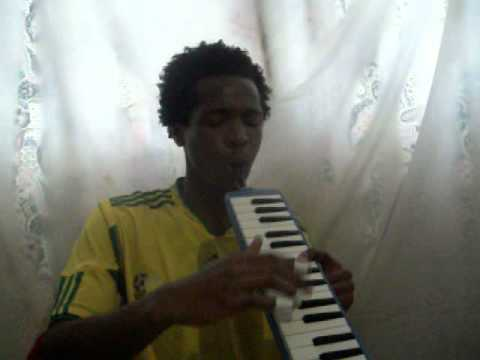 TKZee - Shibobo & Europe - Final Countdown melodica tribute by Cassio De nova.avi