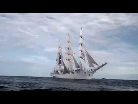 """MS """"Maersk Moller McKinney"""" i STS """"Dar Młodzieży"""" w Gdańskim Porcie"""