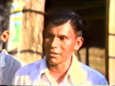 Los indígenas de Costa Rica (1985)
