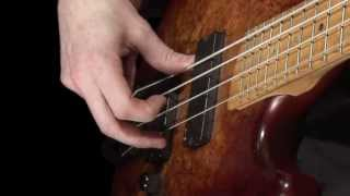 Download Learn Bass - How to Pluck the Strings Mp3 and Videos