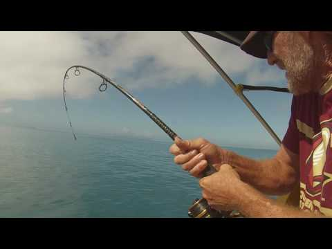 Fishing Mackay QLD Cockermouth Trip