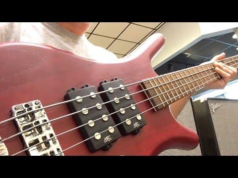 Music Man or Warwick Bass?