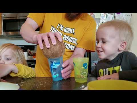 How to Open a Coconut with Kids