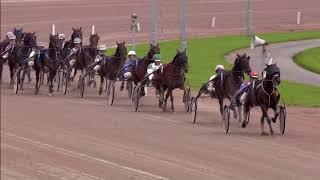 Vidéo de la course PMU PRIX WOLVEGA SALE