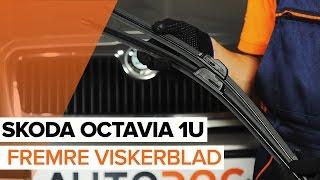 Hvordan erstatning Viskerblader SKODA OCTAVIA 2019 - bruksanvisning