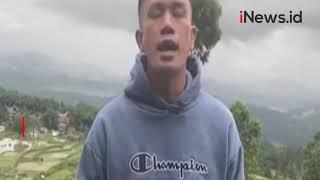 Video Viral Kerbau di Toraja Utara Tewas saat Diadu