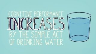 Water: Amazing Brain Foods | A Little Bit Better With Keri Glassman